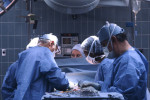 Medical Malpractice lawyer Raleigh